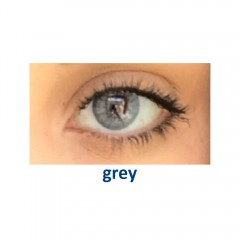 Eye Free Colors EDG, цвет: grey (2 линзы)